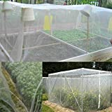 <span class='highlight'>SWL</span>-<span class='highlight'>seller</span> Plant Crops Protect Mesh Bird Insect Animal Garden Net Netting Vegetables Pest (15 * 2M)