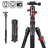 Best Compact Macro Cameras - Zomei M5 Travel Camera Tripod,Lightweight Aluminum Tripod Compact Review