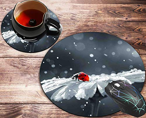 Round Mouse Pad and Coasters Set, Ladybug on Daisy Flower Design Mousepad, Anti Slip Rubber Round Mousepads Desktop Notebook Mouse Mat for Working and Gaming