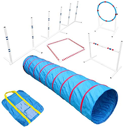 Affordable Agility Agility in a Bag with 9 ft Tunnel