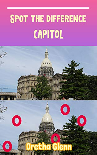 Spot the difference Capitol: Picture puzzles for adults Can You Really Find All the Differences? (English Edition)