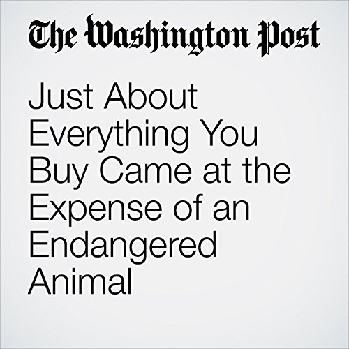 Just About Everything You Buy Came at the Expense of an Endangered Animal copertina