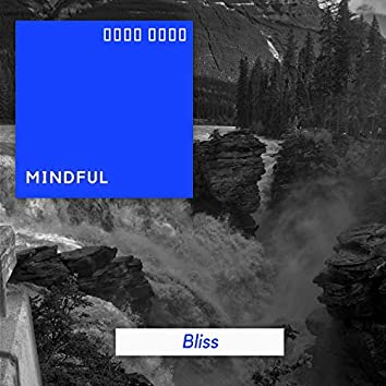 # 1 Album: Mindful Bliss