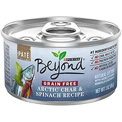 Purina Beyond Grain Free, Natural Pate Wet Cat Food, Grain Free Arctic Char & Spinach Recipe - (12) 3 oz. Cans