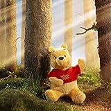 Zoom IMG-1 simba disney winnie the pooh
