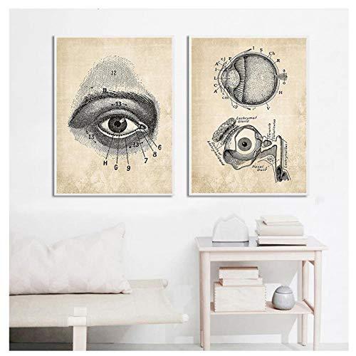 DLFALG Anatomía Ojos Arte de la pared Pintura en lienzo Carteles nórdicos Impresiones Educación médica Vintage Cuadros de pared Hospital Médico Oficina Decoración-40x50cmx2 Sin marco