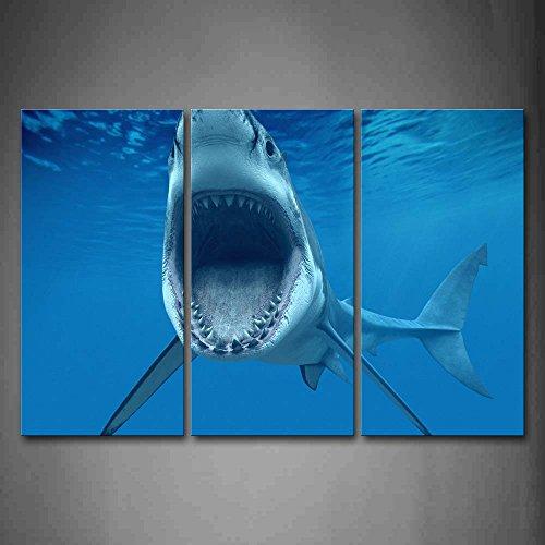 First Wall Art - Tiburón Boca Abierta Cuadros en Lienzo Azul Mar Baño Decoracion de Pared 3 Piezas Modernos Vida Marina Mural Fotos para Salon,Dormitorio,Comedor