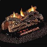Peterson Real Fyre 24-Inch Split Oak See-Thru Gas Log Set with Vent-Free Propane ANSI Certified G9 Burner - Basic On/Off Remote
