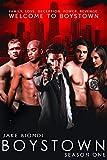 dallas tv series season 8 - BOYSTOWN Season One