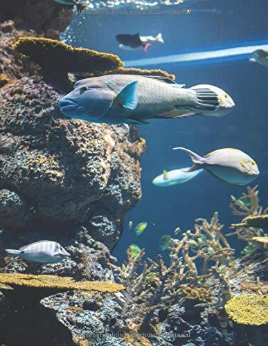 Mein Taucherlogbuch: Das Tauchtagebuch zum ausfüllen I über 100 Seiten für deine Tauchgänge I Diving Log I A4+ Format I Motiv: Aquarium