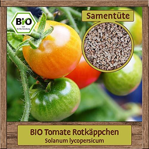 20 Premium BIO Tomatensamen Saatgut bekannte Sorte Rotkäppchen zur Anzucht Garten, Balkon, Gewächshaus Samen für ca. 15 Pflanzen