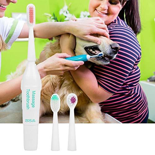 Pssopp huisdier elektrische tandenborstel hond kat tanden schoonmaken gereedschap professionele elektrische hond tandenborstel met twee zachte borstel hoofd, Groen