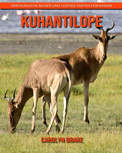 Kuhantilope: Erstaunliche Bilder und lustige Fakten für Kinder