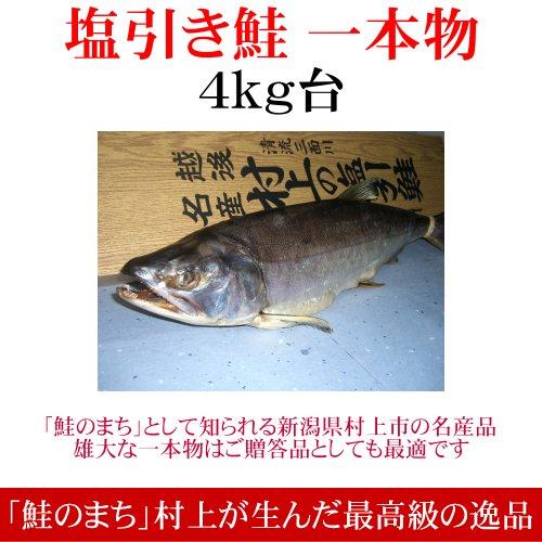 塩引き鮭 一本物 切り身加工(4kg台)/新潟 村上 鮭 特産品 塩引鮭