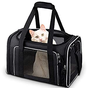 Comsmart Cat Carrier, Pet Carrier Airline Approved Pet Carrier Bag Collapsible 15 Lbs Dog Carrier for Small Medium Cats Dogs Puppies Kitten – Black