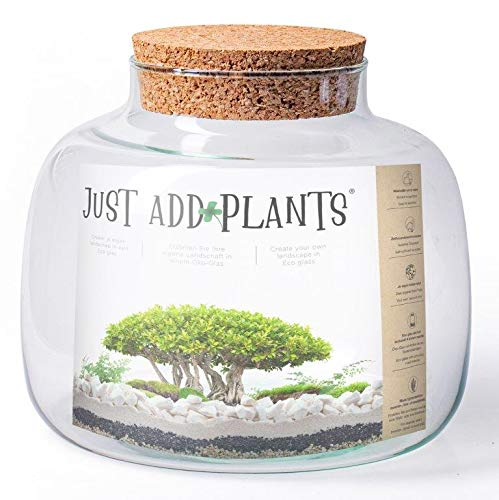 Annastore XXL Terrarium Pflanzenterrarium inklusive allem - Nur noch Pflanze dazu - Fertig H 30 cm/H 18 / oder H 20- Pflanzenglas - Flaschengarten (H 18 Ø 22 cm + Korken)