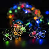GIGALUMI 2 Pack Solar Strings Lights, Solar Fairy Lights 23 Feet 50 LED Flower Lights, Solar Christmas String Lights for Outdoor, Home, Lawn, Wedding, Patio, Party and Holiday Decorations-Multi Color