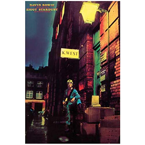 chtshjdtb David Bowie - Ziggy Stardust Canvas Painting Art Poster Print for Home Wall Living Room Decor -20X28 inch No Frame 1 PCS