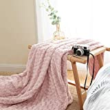 JINCHAN Throw Blanket Pale Pink Soft Cozy Fuzzy Dimensional Rose Design Coverlet for Girls Teenager Kids Living Room Bedroom Nursery Couch Sofa Chair Recliner Bed Decor Gift Four Seasons 50x60 Inch