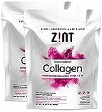 Zint Collagen hydrolysate Protein Powder | Certified Paleo Friendly | Collagen Supplements for Men and Women, 16 oz (2 Pack 32oz Total)