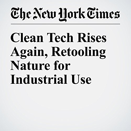 Clean Tech Rises Again, Retooling Nature for Industrial Use audiobook cover art