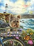 DIY 5D diamond painting, Para adultos Pintura De Diamantes Diseño Abstracto De Art Dog Handicraft Animal Seaside Deco -40x30cm