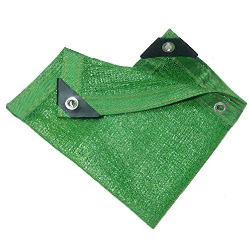 Dbtxwd Rete Resistente Ai Raggi UV del Tessuto Dell'ombra del Reticolato Dell'ombra del Reticolato del Sole per La Piscina del Carport del Giardino del Fiore Carport, Verde