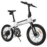Vélo cyclomoteur électrique Pliable à Double Usage avec Moteur 250 W Max 25 km/h 10 Ah Batterie Pompe de gonflage cachée Variateur de Vitesse - Gris/Blanc (Gris)