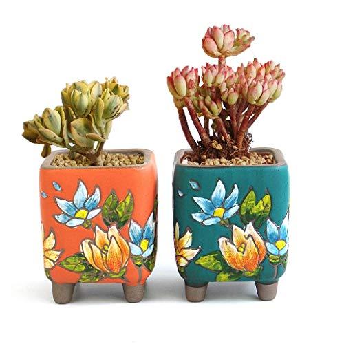 Summer Impressions Handbemalter Sukkulenten-Übertopf Kaktus Pflanztopf Bonsai Tontopf Blumentopf Blumen-Design Indoor Outdoor Hoch quadratisch orange und grün