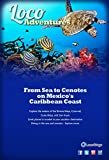 Loco Adventures - From Sea to Cenotes on Mexico's Caribbean Coast: Diving and Snorkeling in the Riviera Maya and Costa Maya (English Edition)
