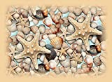 Photo Gallery tappeto passatoia vinile tema mare in tonalità chiara per arredare cucina e camera misura 50x80 cm