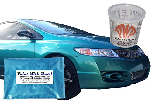 Price comparison product image 25g Blue Green Flip Chameleon Paint Powder - Color Shift Paint Pigment - for Any Custom Paint,  Powder Coat,  or Epoxy Coating