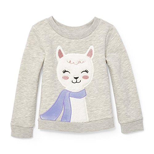 The Children's Place Baby Girls' Long Sleeve T-Shirt, H/T Falcon 89858, 5T