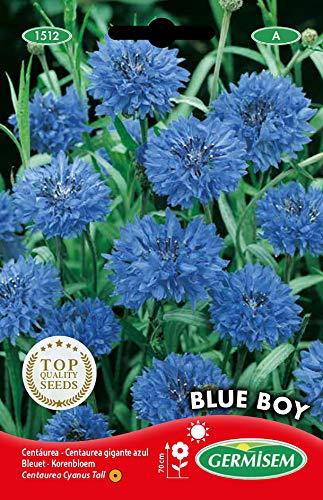 Germisem Blue Boy Semi di Fiordaliso 1.5 g