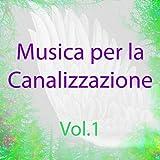 Musica per la canalizzazione, Vol. 1 (Spiritualità e guarigione)