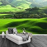 HD césped montaña paisaje natural foto mural de pared TV sala de estar sofá Fondo decoración del hogar papel tapiz papel pintado pared dormitorio de estar sala de estar fondo No tejido-250cm×170cm