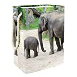 Cesto para Lavar la Ropa Hampe con Asas Elefante Animal 60L