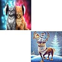 最新の2ピースDIY5Dダイヤモンドペインティングキット、図面セット付きの数字による動物の世界のアート写真(12 * 16インチ),B