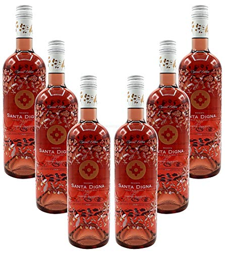 Rose Wein Set - 6x Santa Digna Cabernet Sauvignon 750ml (13,5% Vol)- [Enthält Sulfite]