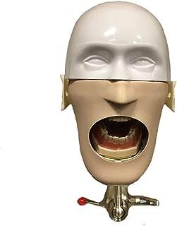 TJIRIS Dental Head Model Oral with Mask Preparation Denture Head-molding Dentist Teaching Practical Model