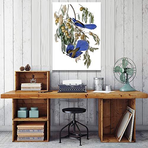 SADHAF vogelposter en print op canvas afbeelding decoratie woonkamer huisdecoratie 50x70cm (senza cornice) A3.