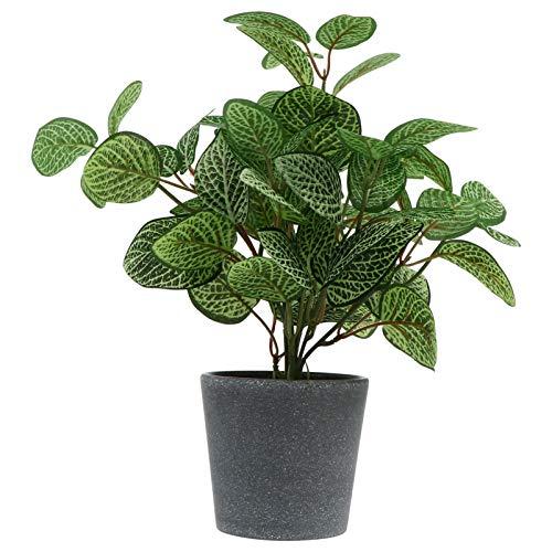 Angoily Mini Macetas Artificiales Plantas de Plástico Falsas Plantas Flores Bonsai Maceta de Cemento Rústico para El Escritorio de La Oficina en Casa Decoración del Estante del Dormitorio
