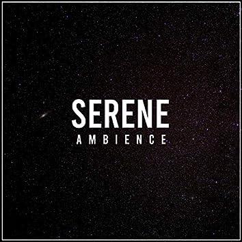 Serene Ambience, Vol. 31