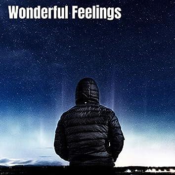 Wonderful Feelings (Instrumental Version)