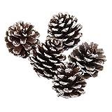 Tia-V& Imetroballar& 9 piezas Pign& Bagatt&ll& de Navidad & partido ALB & ro App& so D&corazioni