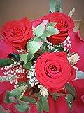 Almaflor Ramo de Rosas eternas Naturales Color Rojo Light. Gratis TU ENVÍO Prime. Ramo de Tres Rosas preservadas Naturales Rojas, Decorado con Verdes y Flores secas. Hecho en España.