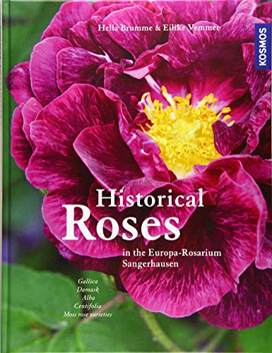 Historical Roses: in the Europa-Rosarium...