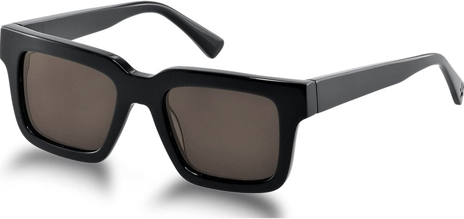 Northern Lights NL15 Gloss Black Sunglasses   Brown