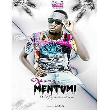 Mentumi (feat. Nyamedua)