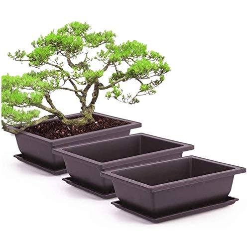ZXYSHOP 6 piezas macetas de plástico, flores bonsái jarrones con bandeja de plástico balcón plantas rectangulares Bowl Balcón Vivero Jarrones Pequeños Suministros de Jardín